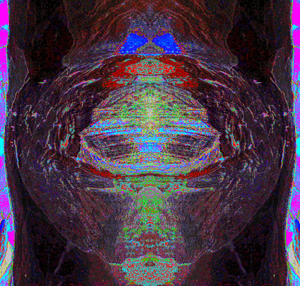 2015-08-20 14.3888.PNG