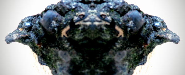 2016-08-09 13.00.19.png