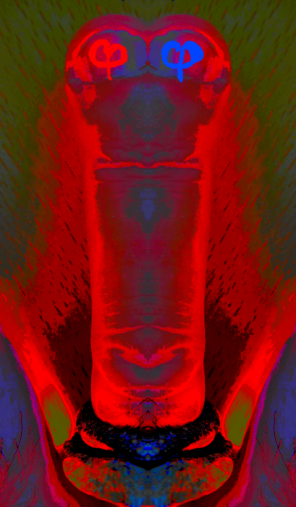 2017-04-06 17.55.5000000.png