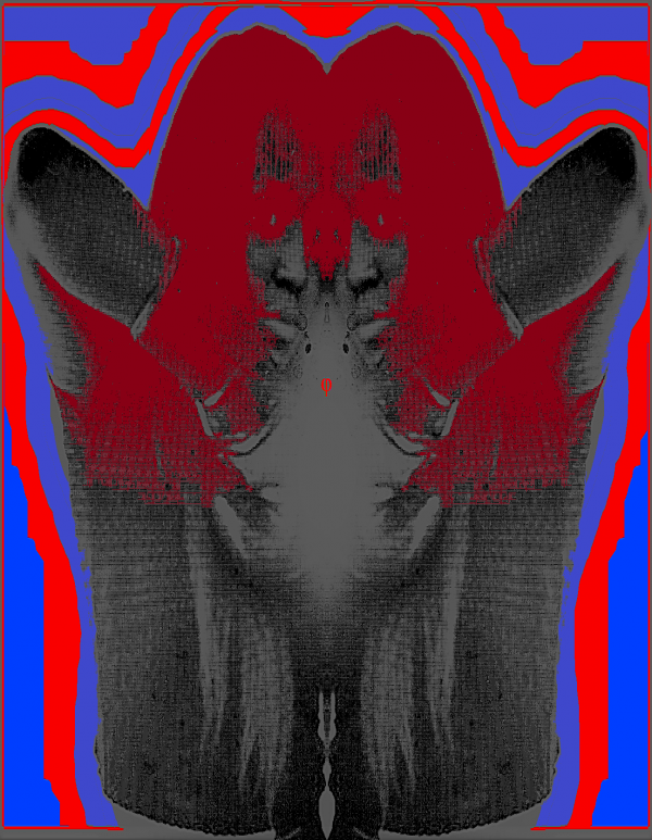 2017-05-19 11.50.033333333333333333.png